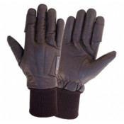 Police / Shooting Gloves (3)